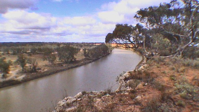 Der Murray bei Waikerie